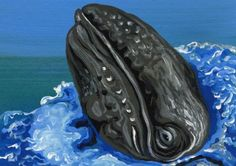 Buy ACEO ATC Grey Whale Fish-Marine Wildlife Art-Carla Smale, Gouache painting by carla smale on Artfinder. Discover thousands of other original paintings, prints, sculptures and photography from independent artists.