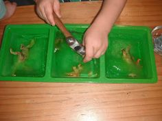 Montessori Classroom Activities for 3-5 year olds. - Montessori Nature