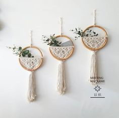 buy Macrame Wall Hanging Nordic Ins Door Wall Decoration Home Background Round Wall Tapestry Woven Flower Pot Homestay Boho Decor Macrame Design, Macrame Art, Macrame Projects, Macrame Knots, Tapestry Weaving, Wall Tapestry, Hanging Tapestry, Headboard Decor, Woven Wall Hanging