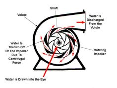 Impeller | Engineering Expert Witness Blog Centrifugal Force, Expert Witness, Submersible Pump, Surfboard, Engineering, Knowledge, Pumps, Blog