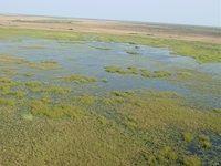 Banhine National Park, Mozambique.