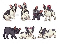 The major breeds of bulldogs are English bulldog, American bulldog, and French bulldog. The bulldog has a broad shoulder which matches with the head. French Bulldog Cartoon, French Bulldog Art, French Bulldog Puppies, French Bulldogs, French Bulldog Harness, Dog Illustration, Little Puppies, Puppy Pictures, Funny Art