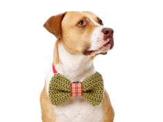 Country Christmas Dog Bow Tie