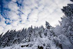 Location: Champoussin, Val-d'Iliez, Canton of Valais, Switzerland.