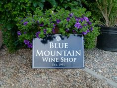 Summer at Blue Mountain Vineyard & Cellars. We are open daily from - Hope to see you this summer! Tasting Room, Blue Mountain, Vineyard, Wine, Lettering, Plants, Summer, Home Decor, Summer Time