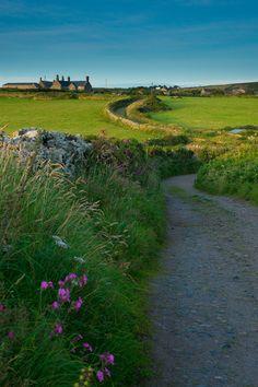 Countryside in Cornwall. ...♥♥...#englishcountryside #lifeafterlondon