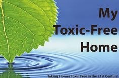 6 Ways to Detox Your Home Detox Your Home, Health Advice, Plant Leaves, Organic, Plants, Life, Plant, Planets
