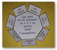 Le pluriel des noms en OU sous forme de leçon à manipuler