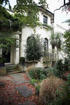 "London home - ""Old Villa"" - the entry garden - gorgeous"