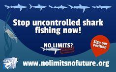 Send the No Limits? eCard far and wide! - No Limits? No Future ...