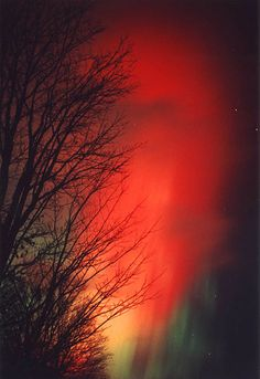 Scarlet Aurora  	November 02, 2001,The above fiery red aurora was photographed on Saturday the 28th of October by Dominic Cantin from near his home in Quebec City, Quebec.
