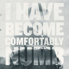 i have become comfortably numb