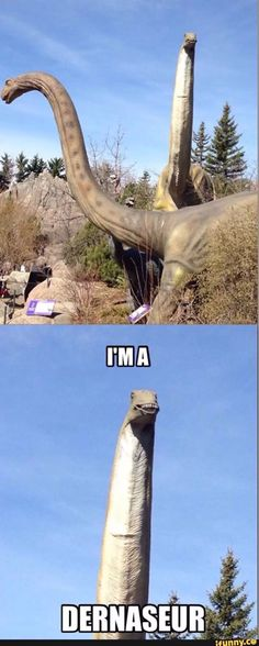 Lol #tarothumor