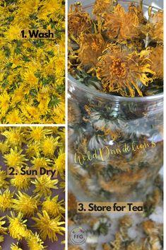 How To Make Detox Tea With Dandelion Flowers Verawonica The Foodie Food Girl Dandelion Flower Detox Tea Dandelion