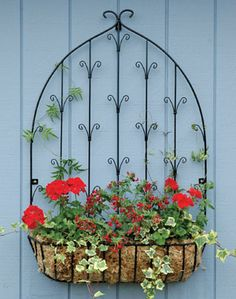 "Hayrack Wall Trellises - Made from steel, enamelled glossy black to complement the planters. Fastening brackets let the trellis stand out 1"" from the wall, to encourage the climbers."