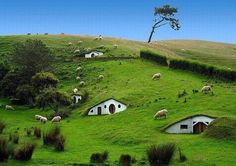 New Zeland.  Hobbit Homes! I would literally pee if I ever saw one of these cause id be so excited.