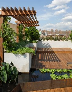 blaise: another perspective of one of the roof decks from another photo. Again, I like the shallow use of this portico coming off of some vertical elements for climbing plants. I think I would like to see an even more shallow (by 50%) use of this kind of design on the west facing wall attached to the penthouse, wrapping around to the narrow walkway.
