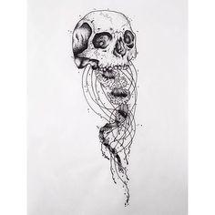skull jellyfish - Google Search