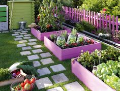 Colorful square foot gardening boxes.