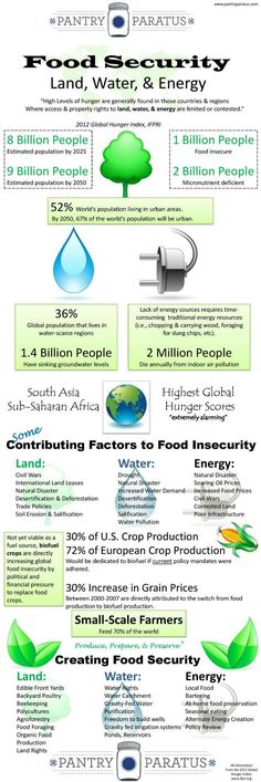 Food Security Infograph from http://pantryparatus.com/