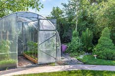 Picture of Greenhouse in back garden with open door stock photo, images and stock photography. Walk In Greenhouse, Large Greenhouse, Backyard Greenhouse, Polycarbonate Panels, Plant Nursery, Plant Growth, Types Of Plants, Back Gardens, Garden Supplies
