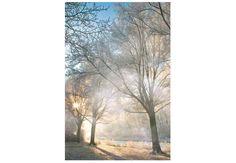 Lav din egen tåge | Digitalfoto.dk