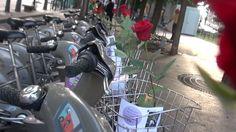 """それが花に変わるだけで起こる変化 """"Opération Roses en Ville"""""""