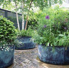 Garden design trends for 2020 - The English Garden garden pots Eco Garden, Garden Shrubs, Garden Trellis, Shade Garden, Garden Pots, Roof Plants, Paving Design, London Garden, Family Garden