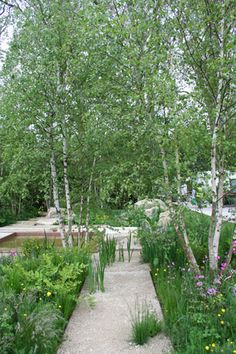 RHS Chelsea Flower Show 2012 The Daily Telegraph Garden designed by garden designer Sarah Price