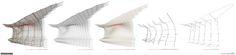 1314814942-dal-canopy-design-process-9.jpg (5000×1168)