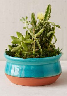 This circularIsta Planter is crafted from natural terra cotta clay and finished with a bright glaze. $18 Sale $9.99. Buy here. Related posts: No related posts.