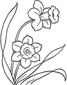 To Print And Color 10 Lovely Daffodil Coloring Pages For Your Little One Peppitextde Malvorlagen Ostern 48 OsterMBI
