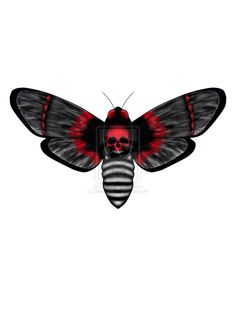 Red and black moth Pisces Tattoos b83874684020f