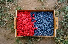 Country Fruits