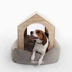 Modern Dog House and Bed Set from Sixhands