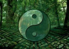 Conquer Anxiety With Lessons From the Tao Te Ching: http://www.theemotionmachine.com/conquer-anxiety-lessons-tao-te-ching/