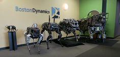 Le groupe Alphabet, maison mère de Google, chercherait à se débarrasser des laboratoiresBoston Dynamics, acquis en 2013, et de ses saisissants robots.