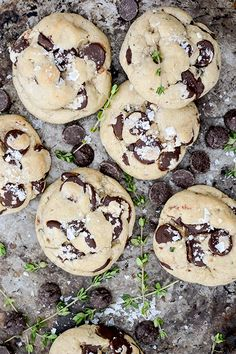 Salted Thyme Chocolate Chip Cookies | www.floatingkitchen.net