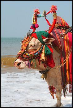 Dressed for the Beach, Goa, India