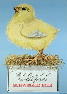 Plakate Niklaus Stoecklin,  Affiche original Niklaus Stoecklin,  Original Poster Niklaus Stoecklin,   title Swiss eggs  technology Color offset Vintage Posters, The Originals, Happy, Animals, Image, Switzerland, Art, Technology, Drink
