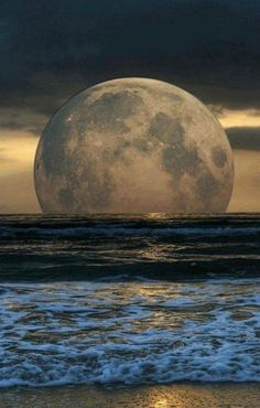 Full moon rising above the ocean is a captivating experience. Moon Moon, Moon Art, Blue Moon, Moon River, Moon Photos, Moon Pictures, Nature Pictures, Moon Pics, Stars Night