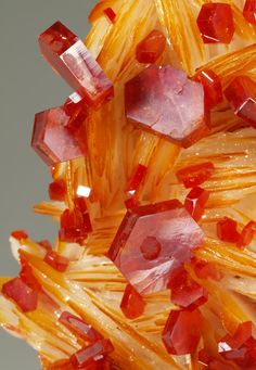 Minerals, Crystals & Fossils — Vanadinite crystals on blades of Barite Cool Rocks, Beautiful Rocks, Minerals And Gemstones, Rocks And Minerals, Buy Gemstones, Natural Crystals, Stones And Crystals, Gem Stones, Orange Crystals