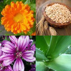 Remédios caseiros para a dermatite atópica - umComo