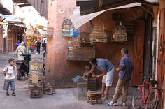 The Mellah, the jewish quarter Marrakech Marrakech, Morocco, History, Travel, Fez Morocco, Paint, Voyage, Viajes, History Books