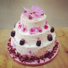 Pink birthday Cake www.lilyvanilli.com