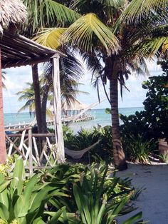 Seafront cabana at Ak'bol Yoga Retreat on Ambergris Caye, just a quarter mile from the second largest Barrier Reef in the world and a bike ride away from the old fishing village of San Pedro known as Isla Bonita. $120 a night