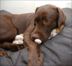 Watching a scary movie with his best friend.