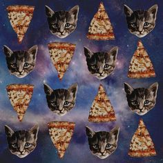 pizza and cats make the world go 'round.