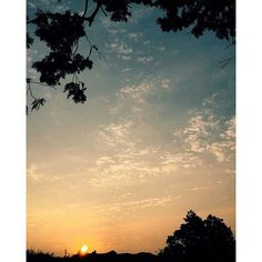 【nobus56】さんのInstagramをピンしています。 《#likes#sun#rise#sky#cloud#forest #view#blue#orange#yellow#white #morning#remember #好き#太陽#朝日#空#雲#森#風景 #青#オレンジ#黄色#白#朝#思い出  何時もの風景だけど、 同じ表情は見られない。 朝日が好きです😄✨ でも、お休みなさい🌙笑》