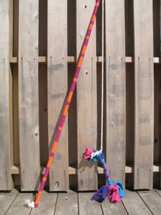 The Flirt Pole: Dog Toy or Life Changer? | notes from a dog walker
